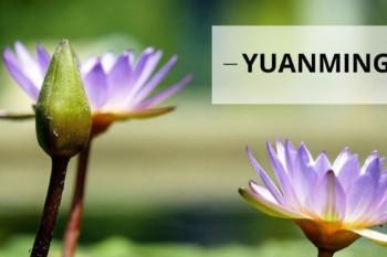 Загадочная смерть последовательницы Фалуньгун накануне её освобождения из тюрьмы